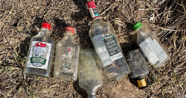 Mums reikia pasikalbėti apie depozitą – 3 dienų alkoholio butelių iššūkis