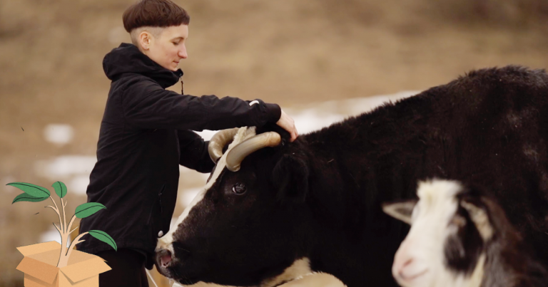 """""""Trijų Paršelių"""" sodyboje – iš skerdyklų ir šiukšliadėžių išgelbėti fermų gyvūnai (VIDEO su gestų kalba)"""